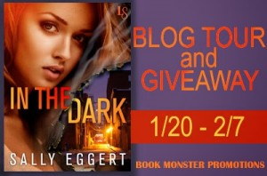 In the Dark Blog Tour Banner